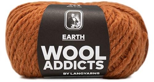 Lang Yarns Wooladdicts Earth 015