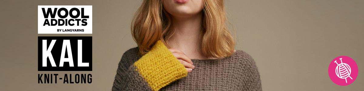 Lernen Sie einen Pullover stricken – KAL – Mit Videoanleitungen und der kostenlosen Anleitung!