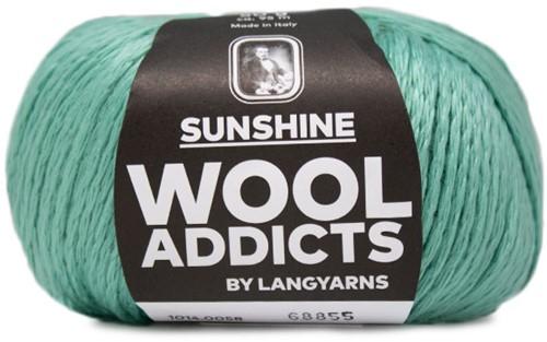 Wooladdicts Spotless Secret T-Shirt Häkelpaket 6 XL Mint