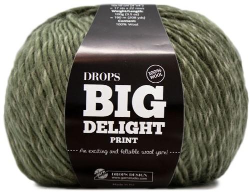 Drops Big Delight 20 Rainforest