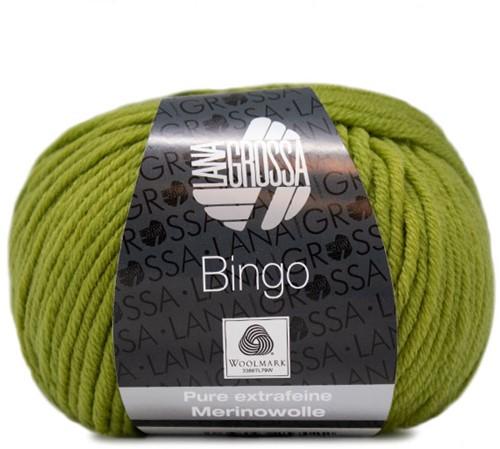 Lana Grossa Bingo 728 Kiwi Green