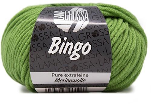 Lana Grossa Bingo 88 Apple Green