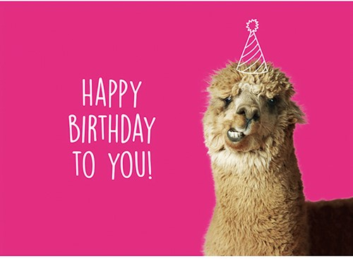 Wollplatz Postkarte - Happy Birthday to You!