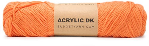 Budgetyarn Acrylic DK 017 Papaya