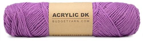 Budgetyarn Acrylic DK 053 Violet