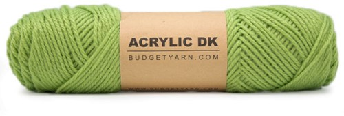 Budgetyarn Acrylic DK 083 Peridot