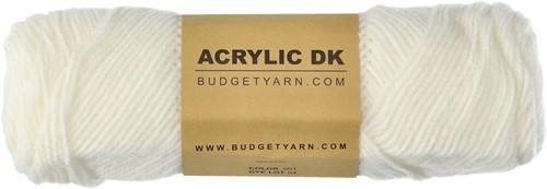Budgetyarn Acrylic DK 001 White