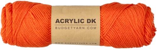 Budgetyarn Acrylic DK 019 Sorbus