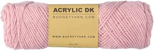 Budgetyarn Acrylic DK 045 Blossom