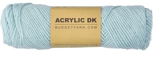 Budgetyarn Acrylic DK 063 Ice Blue