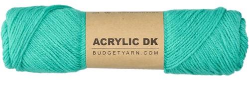 Budgetyarn Acrylic DK 076 Mint