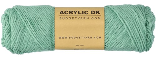 Budgetyarn Acrylic DK 079 Aventurine