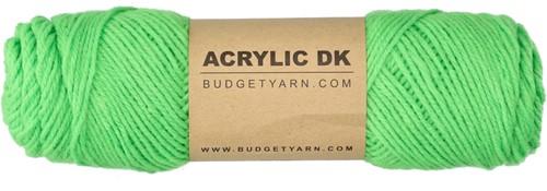 Budgetyarn Acrylic DK 085 Pesto
