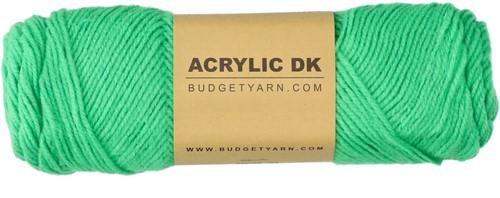 Budgetyarn Acrylic DK 086 Peony Leaf
