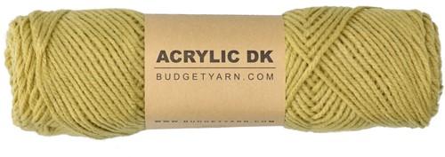 Budgetyarn Acrylic DK 089 Gold