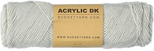 Budgetyarn Acrylic DK 094 Silver