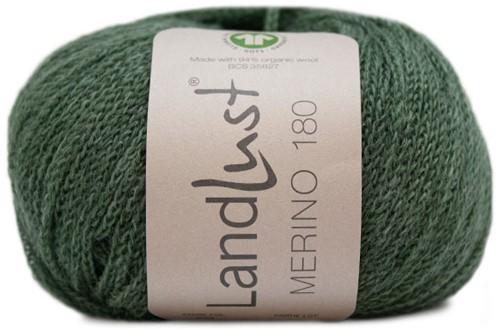 Lana Grossa Landlust Merino 180 235 Gray green