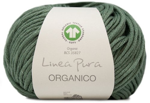 Lana Grossa Organico Uni 130 Reeds Green