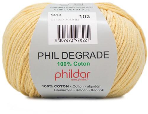 Phildar Phil Degrade 2019 Gold